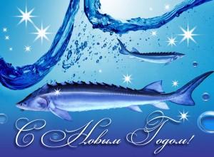 Поздравляем С Новым Годом 2012!
